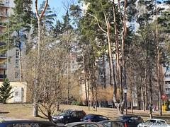 ЖК Чайки біля Київа 2  Ukraine  InterNetri