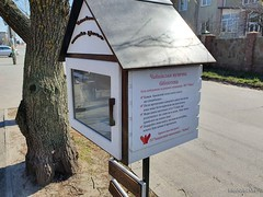 Чайки, біля Київа 18  Ukraine  InterNetri