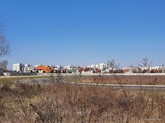 Чайки, біля Київа 12  Ukraine  InterNetri