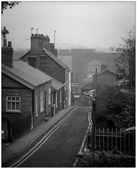 Photo of Weaver glimpse (gbw,86,74,08)
