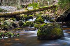 Falkauer Wasserfall 4