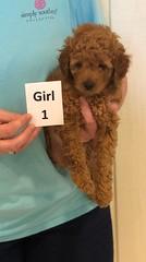 Lola Girl 1 pic 4 3-27