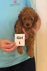 Lola Girl 1 pic 2 3-27