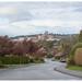 henderson road (scenic view)