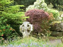 Photo of Pencarrow House gardens