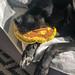 Der schwarze Hund ist auf dem Sofa mit einem Spielzeug im Mund eingeschlafen und ruht sich aus