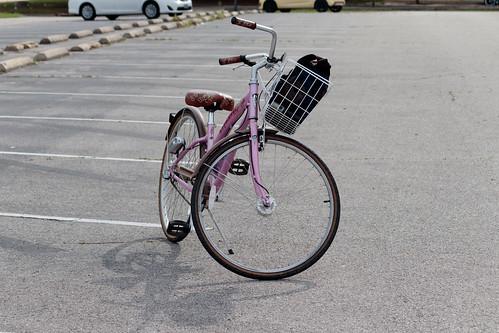 March 29th Bike Ride: Agronomy Rd Transformer Station
