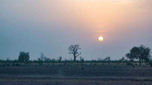 Sundown in the Sahel