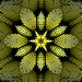 Kaleidoscopic Gold