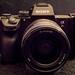 Sony a7RIII + FE 24mm f/1.4