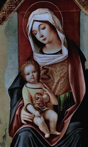 IMG_9454 Baldassare Carrari vers 1460-1516  Forli  Vierge à l'Enfant  Madonna and Child vers 1505-1515 Ferrara Pinacotheca Nazionale