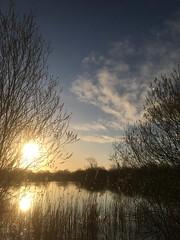 Photo of The sun still rises