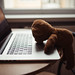 Tired teddy bear sleeping on laptop