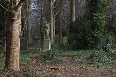 Photo of Cathcart Cemetery