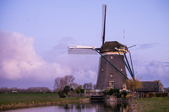 Spring Morning in Holland