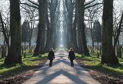 Photo of 27th March 2020. Morning Constitutional. An avenue in the Southern Cemetery, Chorlton,  Manchester.