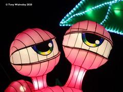 Photo of Chinese lanterns - Roundhay Leeds