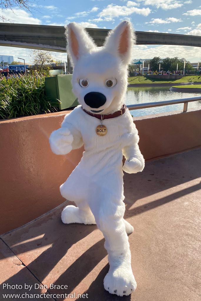 Bolt At Disney Character Central