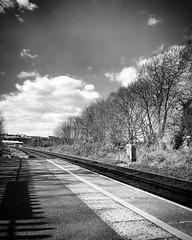 diary #2573: Before The Viaduct (Lockdown Edit)