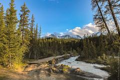 Aktru-Glacier-Altay-Ледник-Актру-Алтай-iphone-3079
