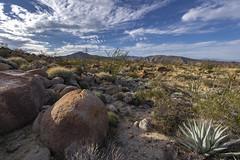 Anza Borrego desert, southern California