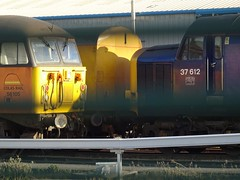Photo of Through the fence. 56105 and 37612 resting in the sun on Canton TMD. Thursday 2nd April 2020.
