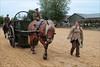 The Horse Ambulance V