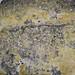 Hydrothermal quartz-pyrite vein rock (latest Cretaceous to earliest Tertiary, 62-66 Ma; Woodville Canyon, near Butte, Montana, USA) 30