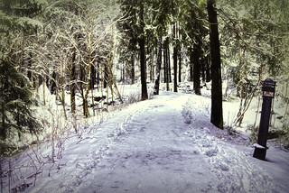 Oslo snowy path edit final