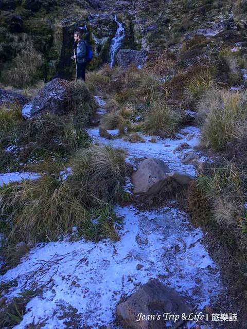 草叢上覆蓋上一層薄霜
