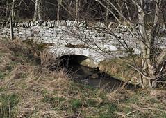 Photo of Old Stone Bridge