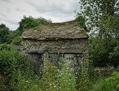 Photo of Abandoned