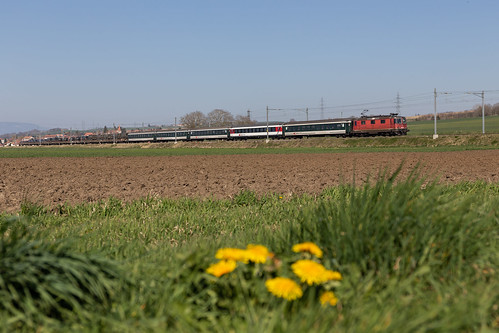 CFF Cargo Re 430 avec train militaire à Bavois (CH)