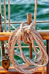 Sailboat close up of coiled rope secured to a wooden belaying pin on a schooner at sea.
