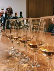 Photo of Taste Testing at Glenfiddich