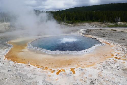 Yellowstone - Upper Geyser Basin
