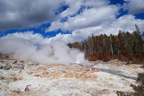 Yellowstone - Norris Geyser Basin