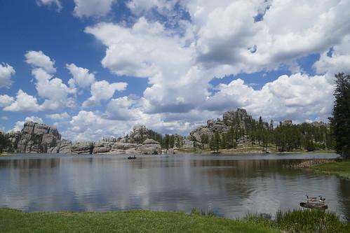 Custer State Park - Lac Sylvan