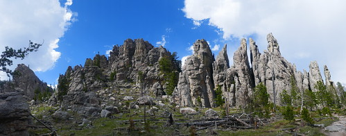 Custer State Park - Cathedral Spires
