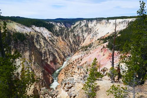 Yellowstone - Grand Canyon de Yellowstone