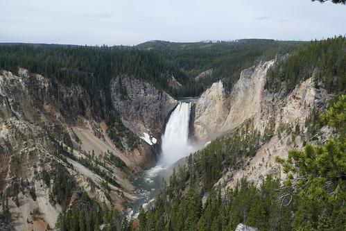 Yellowstone - Grand Canyon de Yellowstone - Lower fall