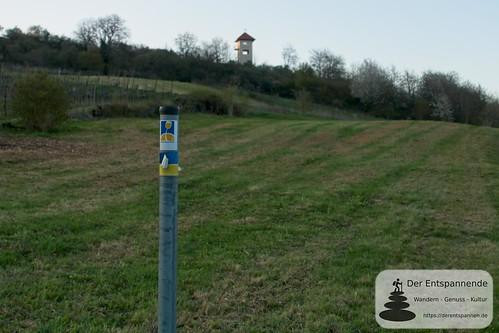 Hiebergturm bei Stadecken-Elsheim