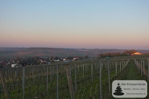 Früher Morgen über Elsheim, Blick nach Engelstadt