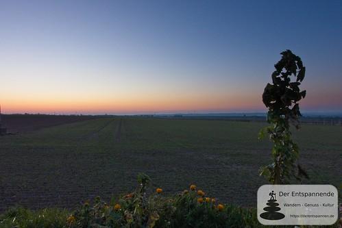 Sonnenaufgang an der Telegrafenstation, Windhäuser Hof