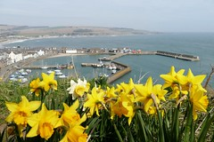 Photo of Stonehaven Harbour