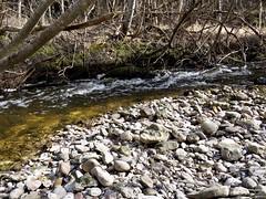 Promenad längs Ire-ån 5 april 2020
