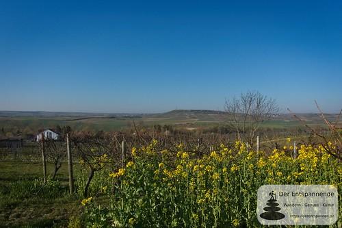 Über Elsheim: Blick auf Selztal und Jugenheimer Höhe