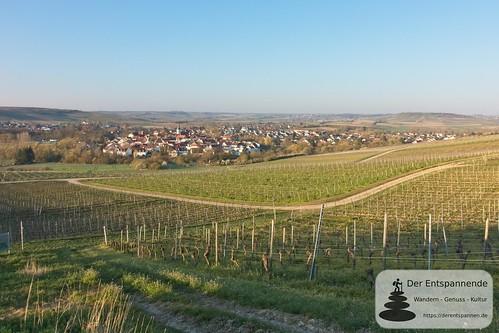 Blick über die Weinberge auf Stadecken