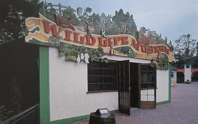 Wildlife Museum in 1988