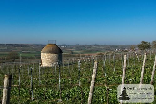 Babo-Häuschen bei Elsheim (frühe Romulanische Epoche )